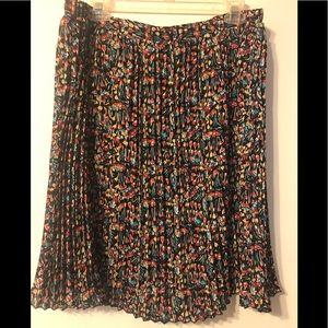 🎉Anthropologie skirt!